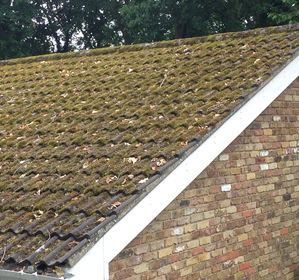 Roof cleaning Devon image